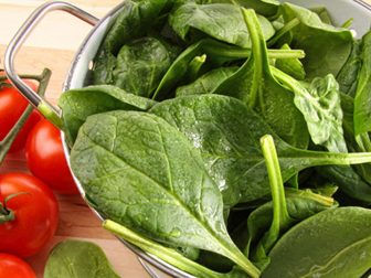 Польза и вред шпината для организма