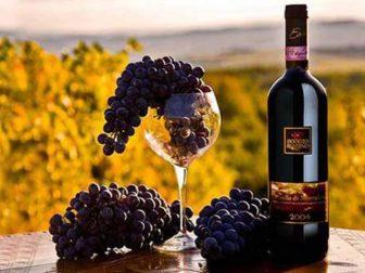 Как правильно выбрать вино