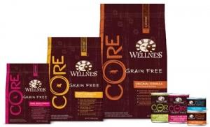 Wellness-Core-Group._V389860542_